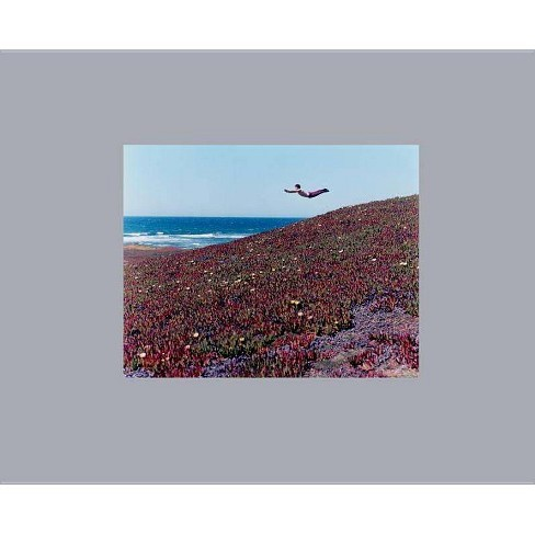 Flying Pictures - (Hardcover) - image 1 of 1