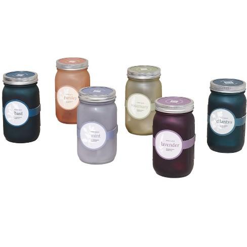 Modern Sprout Glass Jar Grow Set, Modern Sprout Indoor Herb Garden Kit