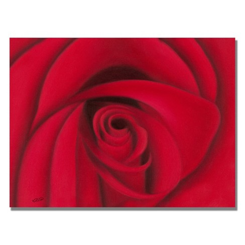 "Trademark Fine Art 18"" x 24"" Rio 'Red Rose' Canvas Art - image 1 of 1"