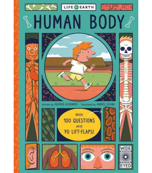 Human Body : With 100 Questions and 70 Flaps to Lift! (Hardcover) (Heather Alexander) - image 1 of 1