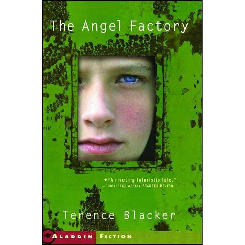 The Angel Factory - by  Terence Blacker (Paperback) - image 1 of 1