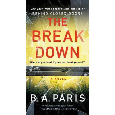 The Breakdown - by B A Paris (Paperback)