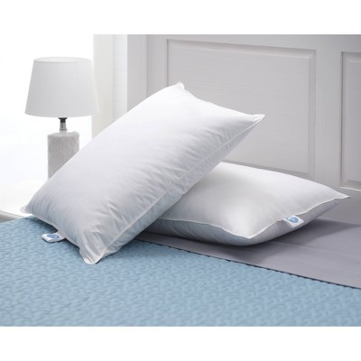 Queen 2pk Down Bed Pillow White - Allied Home