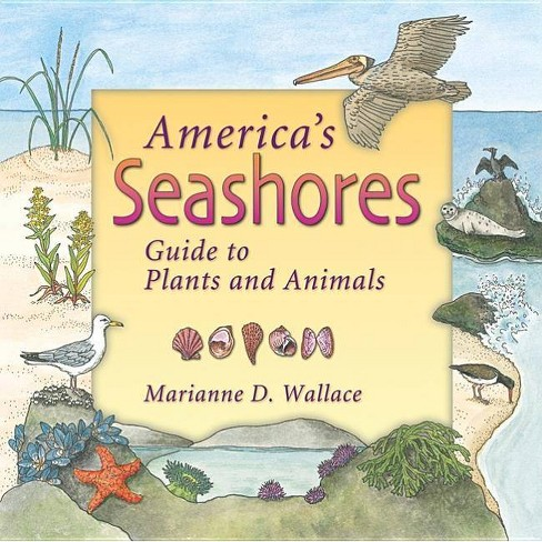 America's Seashores - (America's Ecosystems) by  Marianne Wallace (Paperback) - image 1 of 1