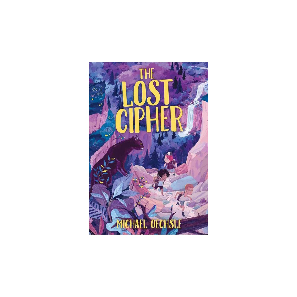 Lost Cipher (School And Library) (Michael Oechsle)
