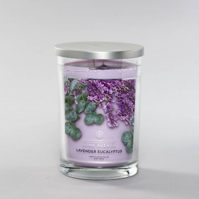 19oz Glass Jar 2-Wick Candle Lavender Eucalyptus - Home Scents by Chesapeake Bay Candle