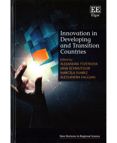Innovation in Developing and Transition Countries (Hardcover) - image 1 of 1