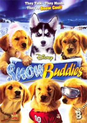 Snow Buddies (DVD)