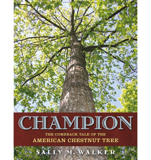 Champion : The Comeback Tale of the American Chestnut Tree -  by Sally M. Walker (Hardcover) - image 1 of 1