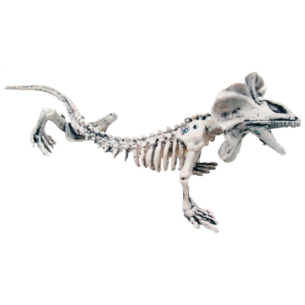6.5 Halloween Lizard Skeleton, Multi-Colored