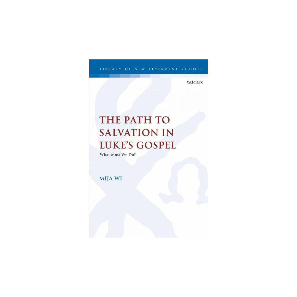Path to Salvation in Luke's Gospel : What Must We Do? - by Mi Ja Wi (Hardcover)