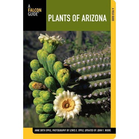 Plants of Arizona - (Falcon Guides) 2 Edition by  Anne Epple & John Wiens (Paperback) - image 1 of 1