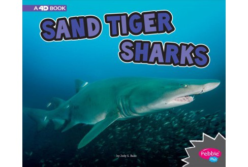 Sand Tiger Sharks : A 4D Book -  (Pebble Plus) by Jody S. Rake (Paperback) - image 1 of 1