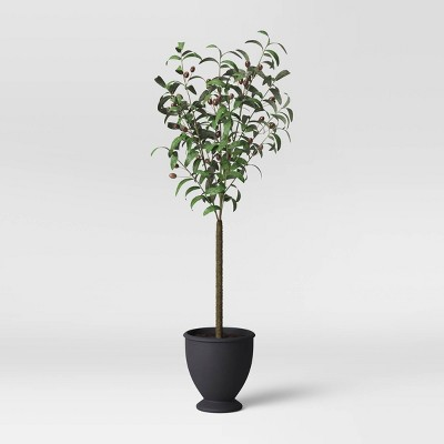 Faux Olive Tree in Pot Black/Green - Threshold™