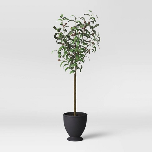 Faux Olive Tree in Pot Black/Green - Threshold™ - image 1 of 3