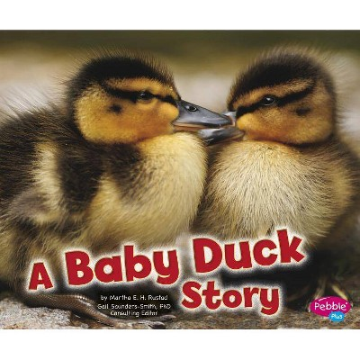 A Baby Duck Story Pebble Plus Baby Animals By Martha E H Rustad Paperback Target