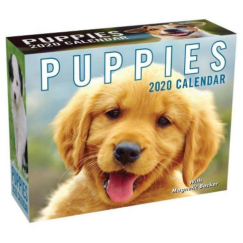 Puppies 2020 Mini Day-To-Day Calendar - by  Andrews McMeel Publishing - image 1 of 1