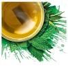 Tazo Refresh Herbal Tea - 20ct - image 4 of 4