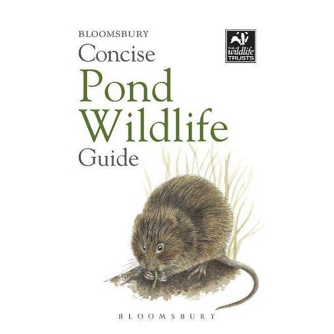 Concise Pond Wildlife Guide - (Paperback) - image 1 of 1