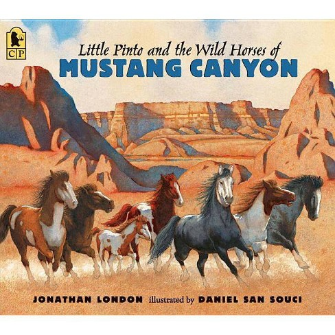Little Pinto and the Wild Horses of Mustang Canyon - by  Jonathan London (Paperback) - image 1 of 1