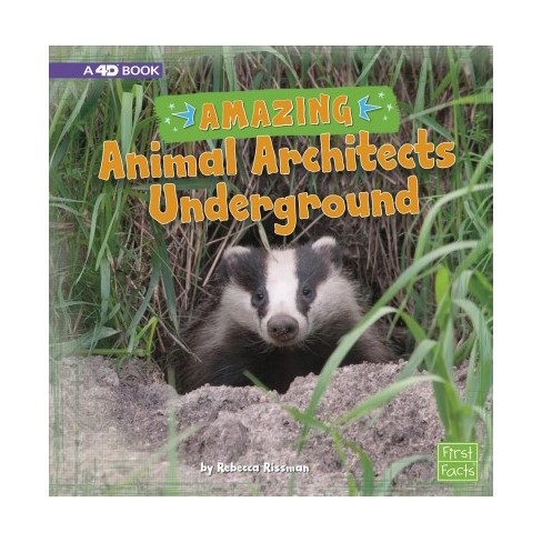 Amazing Animal Architects Underground A 4d Book By Rebecca