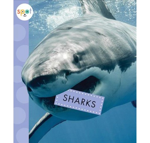 Sharks -  (Spot Ocean Animals) by Mari Schuh (Paperback) - image 1 of 1