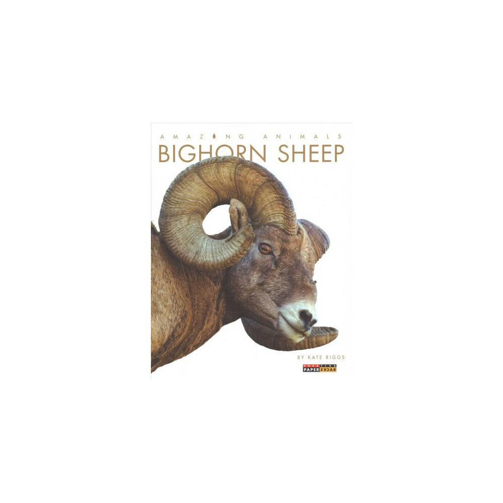Bighorn Sheep - Reprint (Amazing Animals) by Kate Riggs (Paperback)