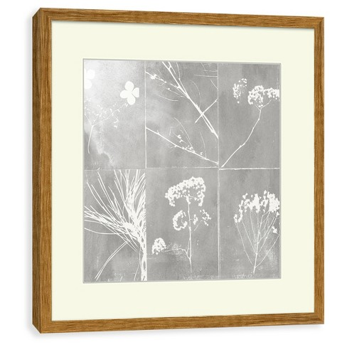 Framed Botanical Wall Print 16 X 16 - Project 62™ : Target