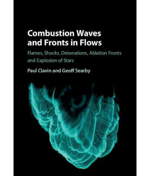 Combustion Waves and Fronts in Flows : Flames, Shocks, Detonations, Ablation Fronts and Explosion of - image 1 of 1