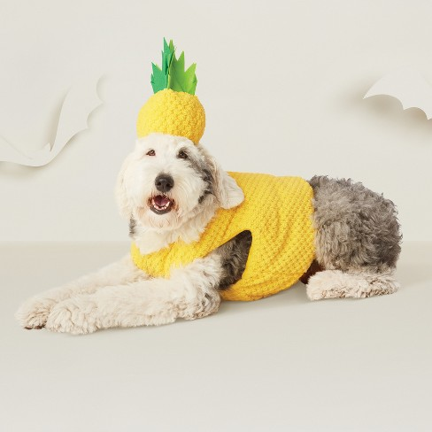 Pineapple Dog Costume - Hyde and Eek! Boutique™ - image 1 of 2