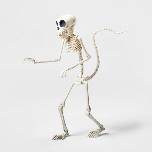 Small Monkey Skeleton Halloween Decorative Prop - Hyde & EEK! Boutique™ - image 1 of 2