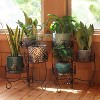 """22"""" Iron French Lily Design 3-Tiered Plant Stand - Set of 2 - Sunnydaze Decor - image 3 of 4"""