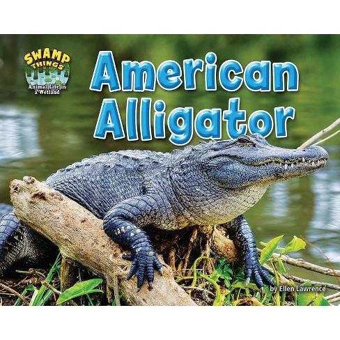 American Alligator - (Swamp Things: Animal Life in a Wetland) by  Ellen Lawrence (Paperback) - image 1 of 1