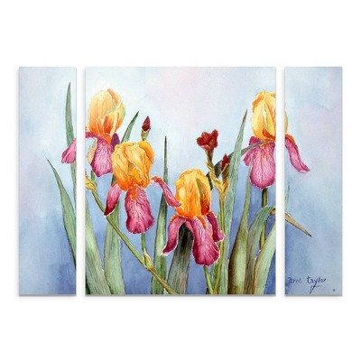 "27""x33.5"" Arie Reinhardt Taylor 'Irises Four' Multi Panel Decorative Wall Art set - Trademark Fine Art"