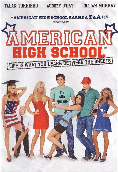 American High School (dvd_video) - image 1 of 1