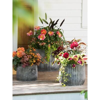 "Galvanized Ribbed Barrel Planter, 14"" - Gardener's Supply Company"