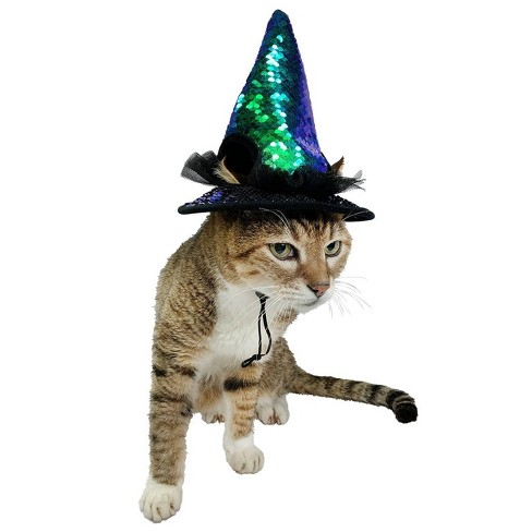Witch Head Cat Costume - Hyde & EEK! Boutique™ - image 1 of 1