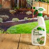 24oz Weed & Grass Herbicide - EcoLogic - image 4 of 4