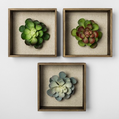 Set of 3 8  Succulent Shadowbox Decorative Wall Sculpture - Threshold™