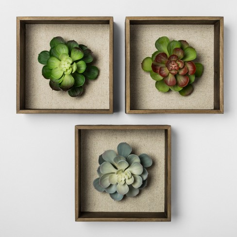 "Set of 3 8"" Succulent Shadowbox Decorative Wall Sculpture - Threshold™ - image 1 of 2"
