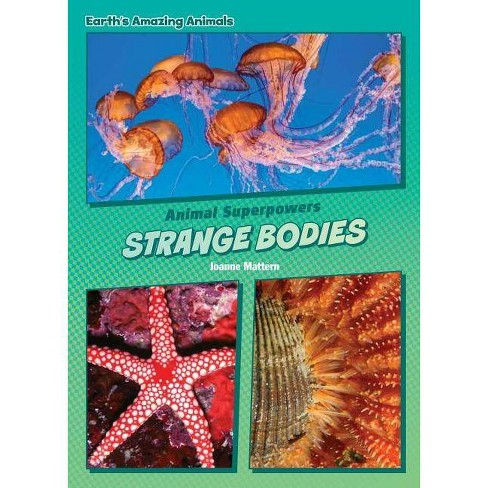 Strange Bodies - (Core Content Science -- Animal Superpowers) by  Joanne Mattern (Hardcover) - image 1 of 1
