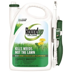 Northern Lawns Wand Weed & Grass - Roundup