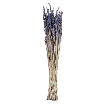 """Vickerman 12-18"""" Lavender Lavender, preserved"""
