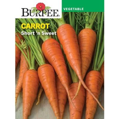 Burpee Carrot Short 'n Sweet