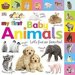 My First Baby Animals : Let's Find Our Favorites! (Hardcover)(Dawn Sirett)