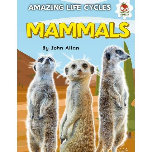 Mammals - (Amazing Life Cycles) by  John Allan (Hardcover) - image 1 of 1