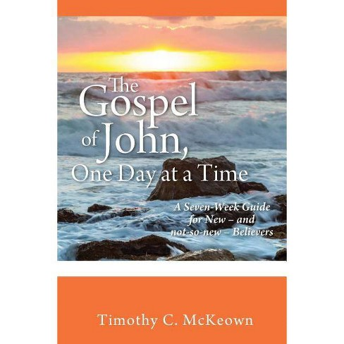 THE GOSPEL of JOHN, ONE DAY at a TIME - by  Timothy C McKeown (Paperback) - image 1 of 1