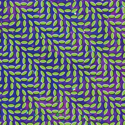 Animal collective - Merriweather post pavilion (Vinyl) - image 1 of 1