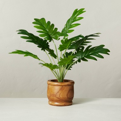 """17"""" Faux Philodendron Potted Plant - Hearth & Hand™ with Magnolia"""