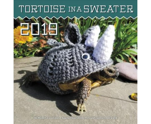 Tortoise in a Sweater 2019 Calendar -  (Paperback) - image 1 of 1